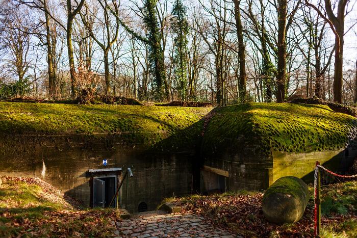 Bunker in park Den Brandt